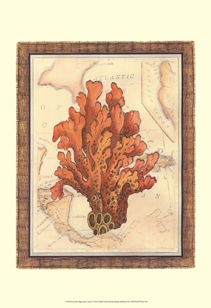 Framed Exotic Map with Coral IV (D) Print