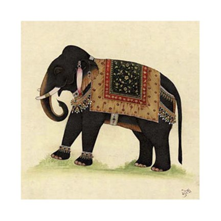 Framed Elephant from India II Print