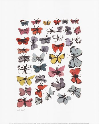 Framed Butterflies, 1955 Print