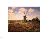 Tulip Fields with Windmill  Fine Art Print