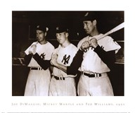 Joe DiMaggio, Mickey Mantle & Ted Williams, 1951
