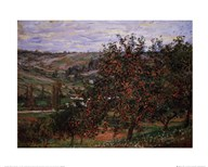 Apple Trees  Fine Art Print