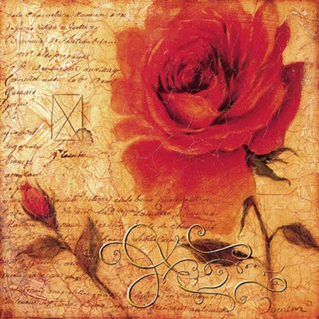 romantic rose gallery   rowena fine art print by joadoor at