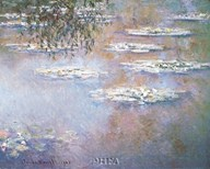 Waterlilies, 1903 Art