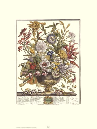 Framed September/Twelve Months of Flowers, 1730 Print