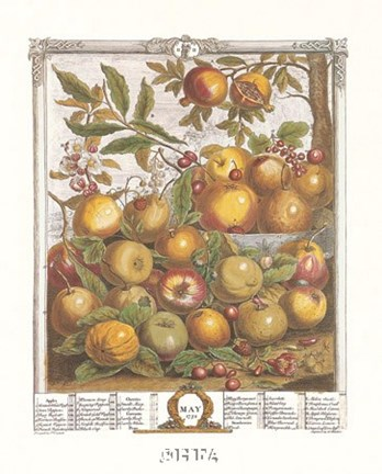 Framed May/Twelve Months of Fruits, 1732 Print