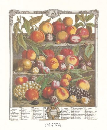 Framed August/Twelve Months of Fruits, 1732 Print
