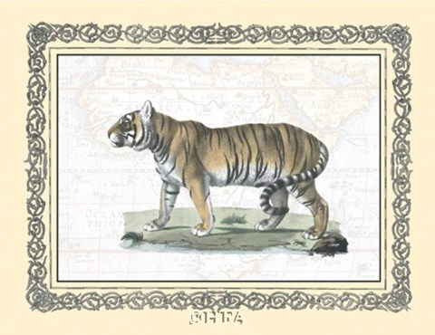 Framed Tiger - patterned frame Print