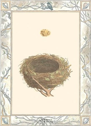 Framed Woodland Nest IV Print