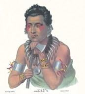 Chief of the Ioways  Fine Art Print