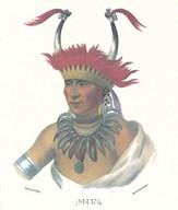 An Otto Half Chief  Fine Art Print
