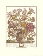 Twelve Months of Flowers, 1730/October