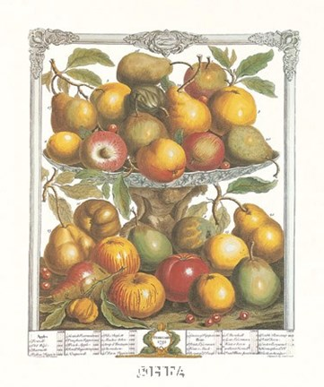 Framed February/Twelve Months of Fruits, 1732 Print