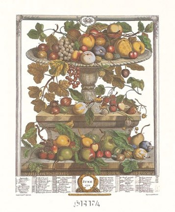 Framed June/Twelve Months of Fruits, 1732 Print