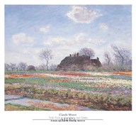 Tulip Fields at Sassenheim  Fine Art Print