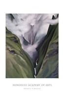 Waterfall  No. III 'Iao Valley  Fine Art Print