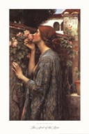 The Soul of the Rose, c.1908