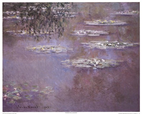 Framed Waterlilies, 1903 Print