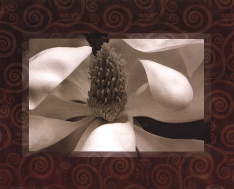 Framed Magnolia Window II Print