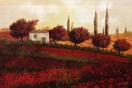 Apapaveri Toscana II  Fine Art Print