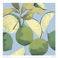 Fresh Limes  Fine Art Print