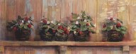 Strawberries in Pots  Fine Art Print