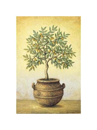 Framed Green Olive Tree Print