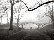 Gothic Bridge, Cental Park, NYC Art