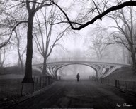 Gothic Bridge, Central Park, NYC  Fine Art Print