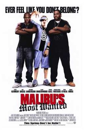 Framed Malibu's Most Wanted Print