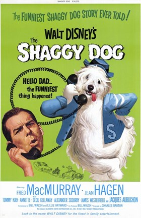 Framed Shaggy Dog Disney Movie Print