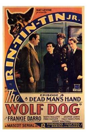 Framed Wolf Dog (movie poster) Print