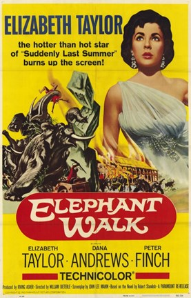 Framed Elephant Walk Print