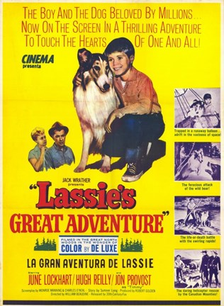 Framed Lassie's Great Adventure Print