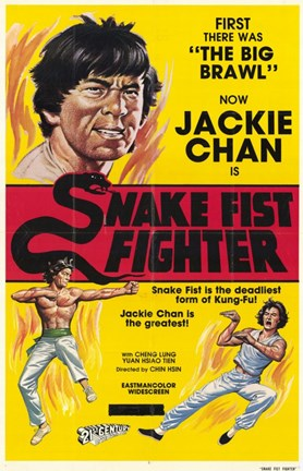 Framed Snake Fistfighter Print