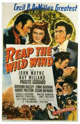 Framed Reap the Wild Wind Print