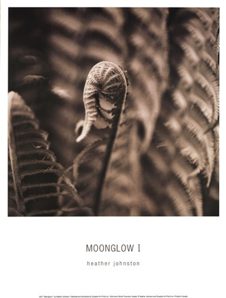 Framed Moonglow I Print