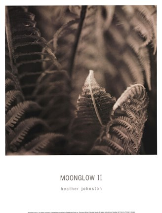 Framed Moonglow II Print