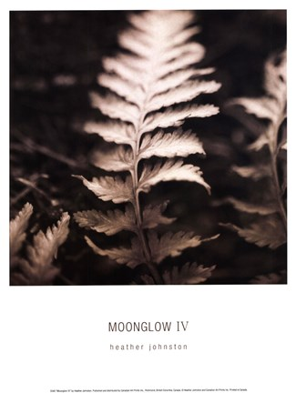 Framed Moonglow IV Print