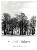 Arbres D&#39;Hivers III