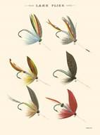 Lake Flies II  Fine Art Print