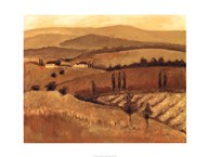 Golden Tuscany Afternoon II  Fine Art Print