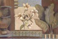 Lanai II  Fine Art Print