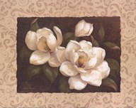Nana&#39;s Magnolias I