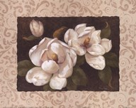 Nana&#39;s Magnolias II