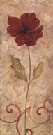 Poppy Passion II Art