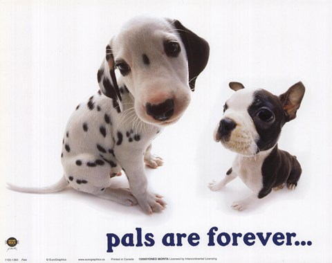 Framed Pals Are Forever Print