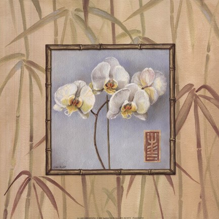 Framed Orchid Spa IV Print