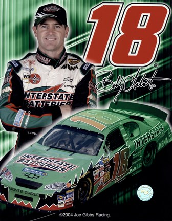 Framed 2005 Bobby Labonte collage- car, number, driver and signature Print