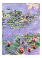 Water Lilies, c. 1914-1917 Art